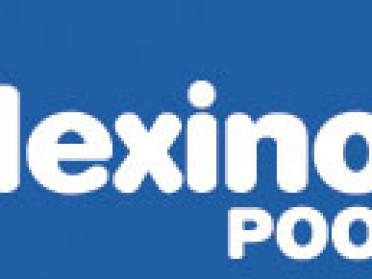 Logo Flexinox